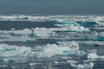 Bad News for the Arctic - Carlos Gamino Wisconsin