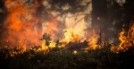 Why Did Wildfires Consume Wine Country in October - Carlos Gamino